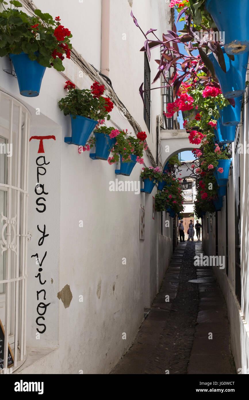 The Calleja de las Flores, Cordoba, Spain. Stock Photo