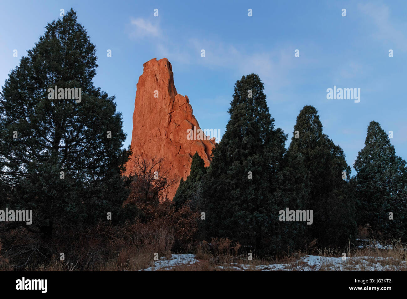 A pillar of sandstone rock tries to fit in with a group of trees at Garden of the Gods, Colorado Springs, Colorado. Stock Photo