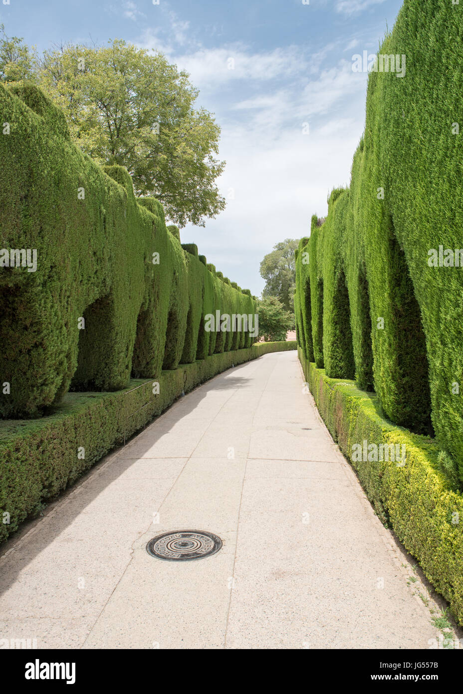 Green Cippress lined walkway at the Alhambra Palace and fortress located in, Granada, Andalusia, Spain. Stock Photo