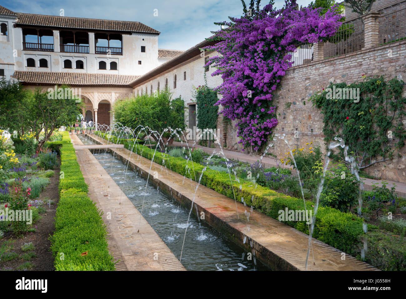 Fountains and bougainvillea growing in the gradens of the Alhambra Palace and fortress located in, Granada, Andalusia, Stock Photo
