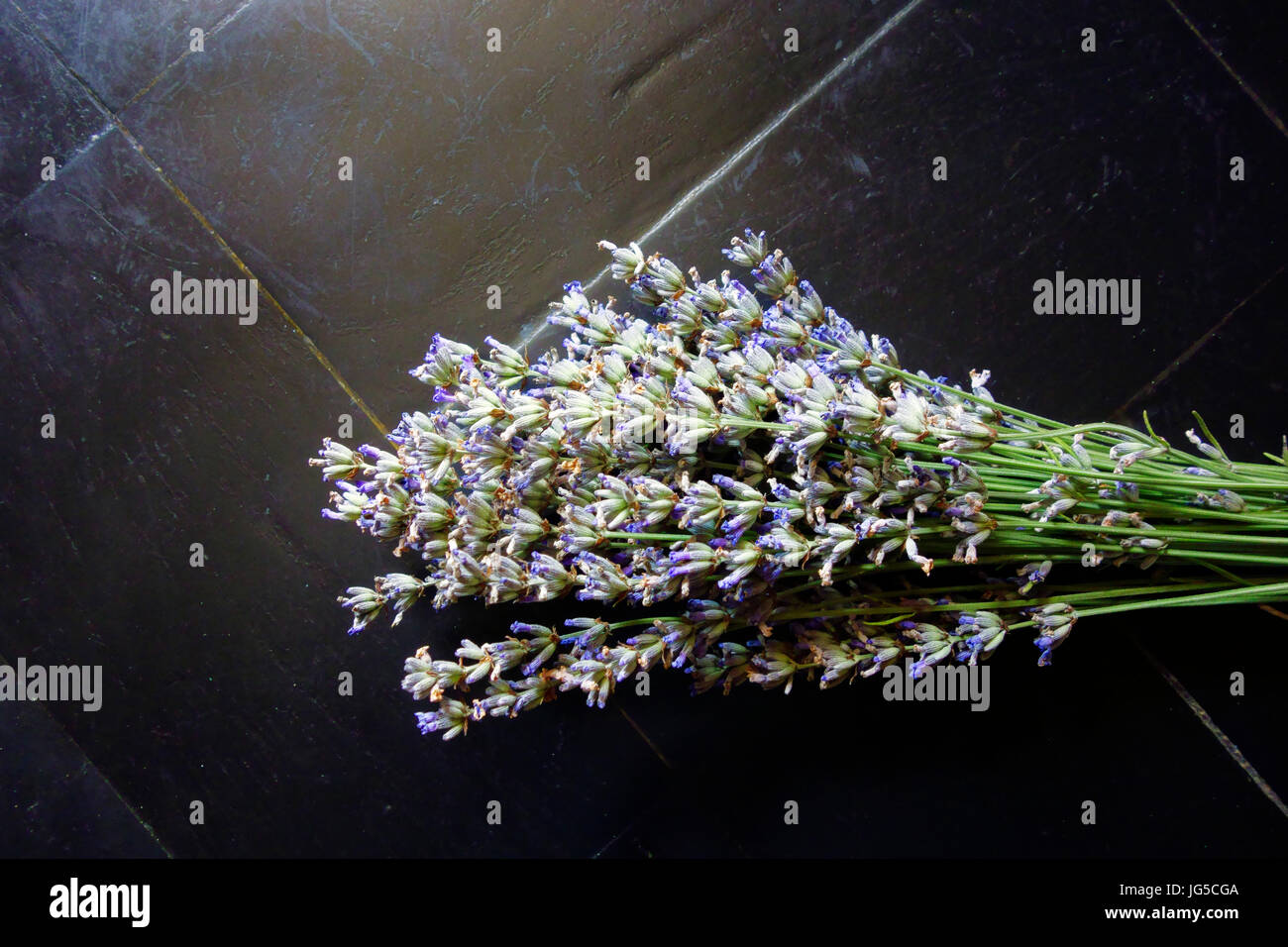 Bouqet of lavender - Stock Image