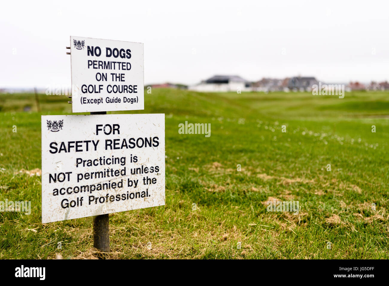 Signs on a golf course warning that dogs are not permitted, and no practicing is permitted without the golf professional. - Stock Image