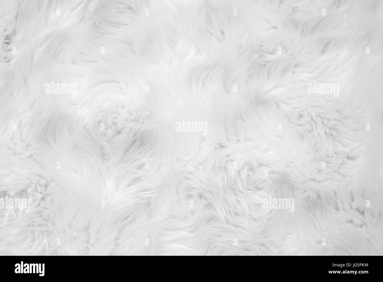 Wool close-up background - Stock Image