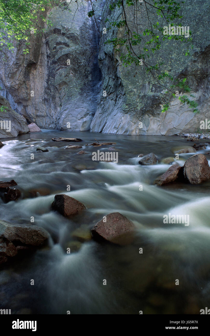 Whitewater Creek, Gila National Forest, New Mexico - Stock Image