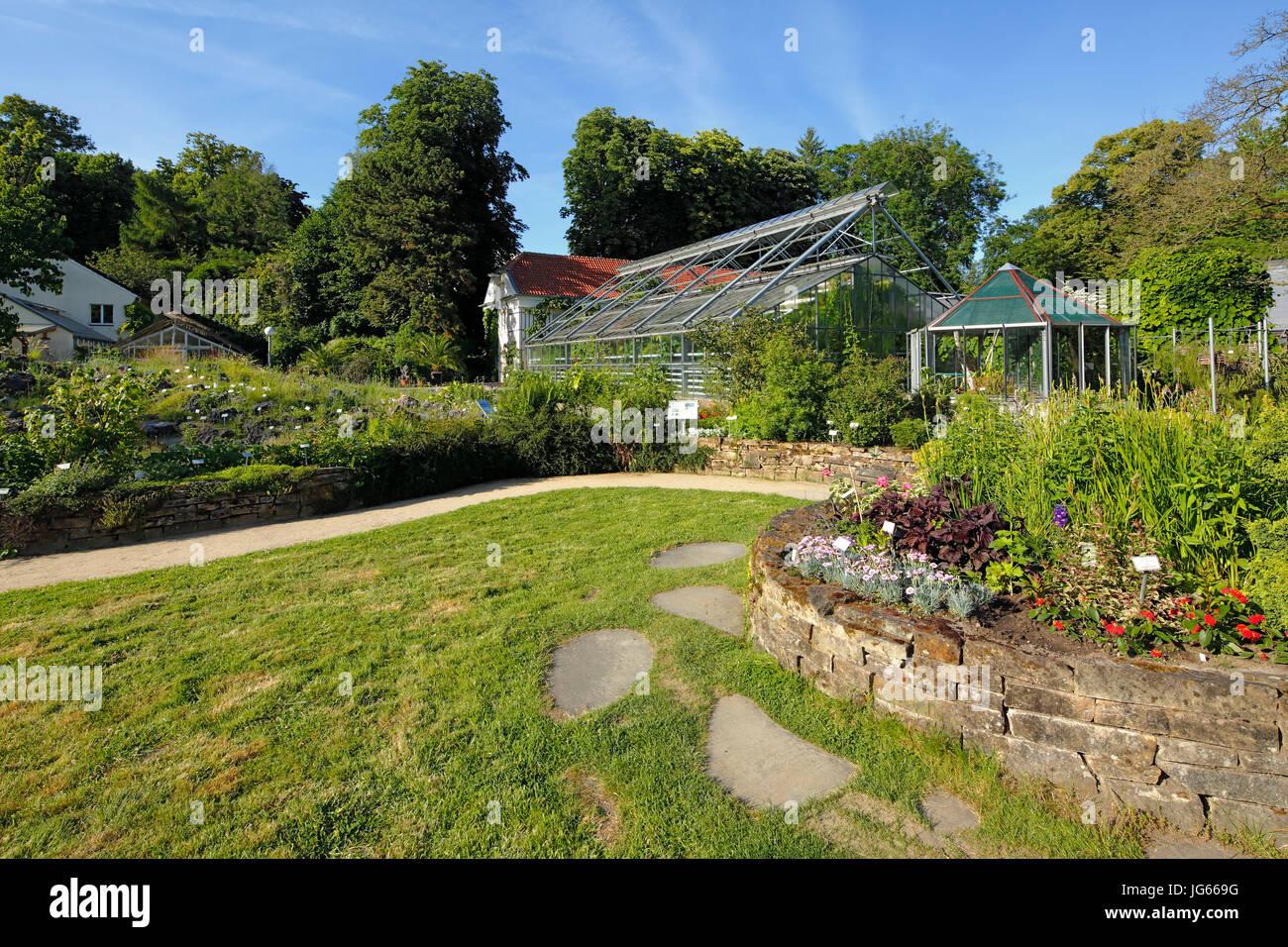 Botanischer Garten der Westfaelischen Wilhelms-Universitaet Muenster, Landschaft, Park, Baeume, Gewaechshaus, Pavillon, - Stock Image