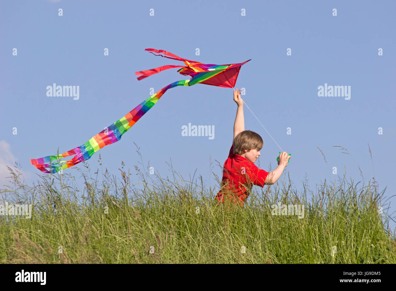 young boy flying kite, Bleckede, Lower Saxony, Germany - Stock Image