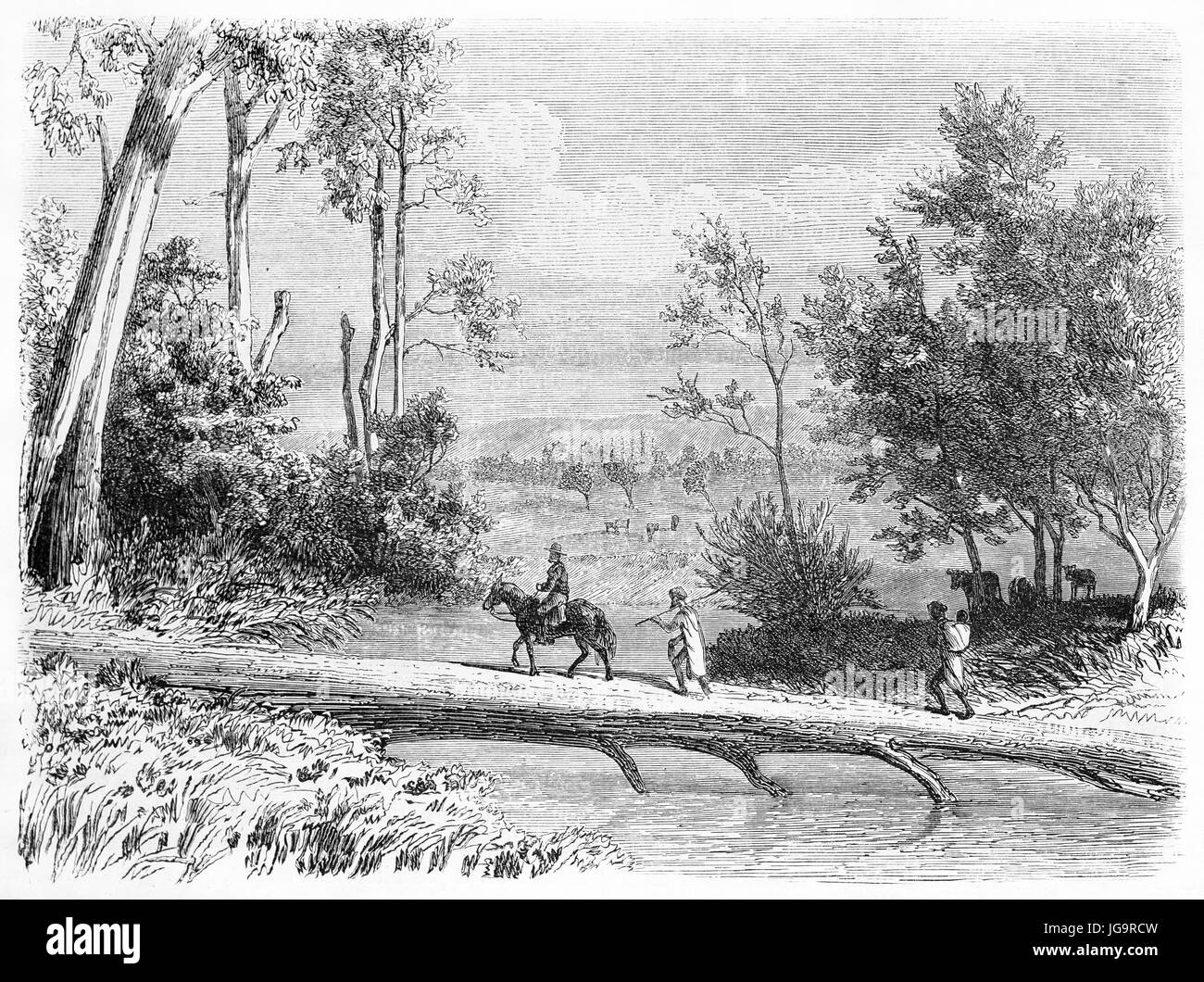 Old view of eucalyptus trunk footbridge in Dalry station, Victoria state, Australia. Created by Girardet and Gauchard, - Stock Image