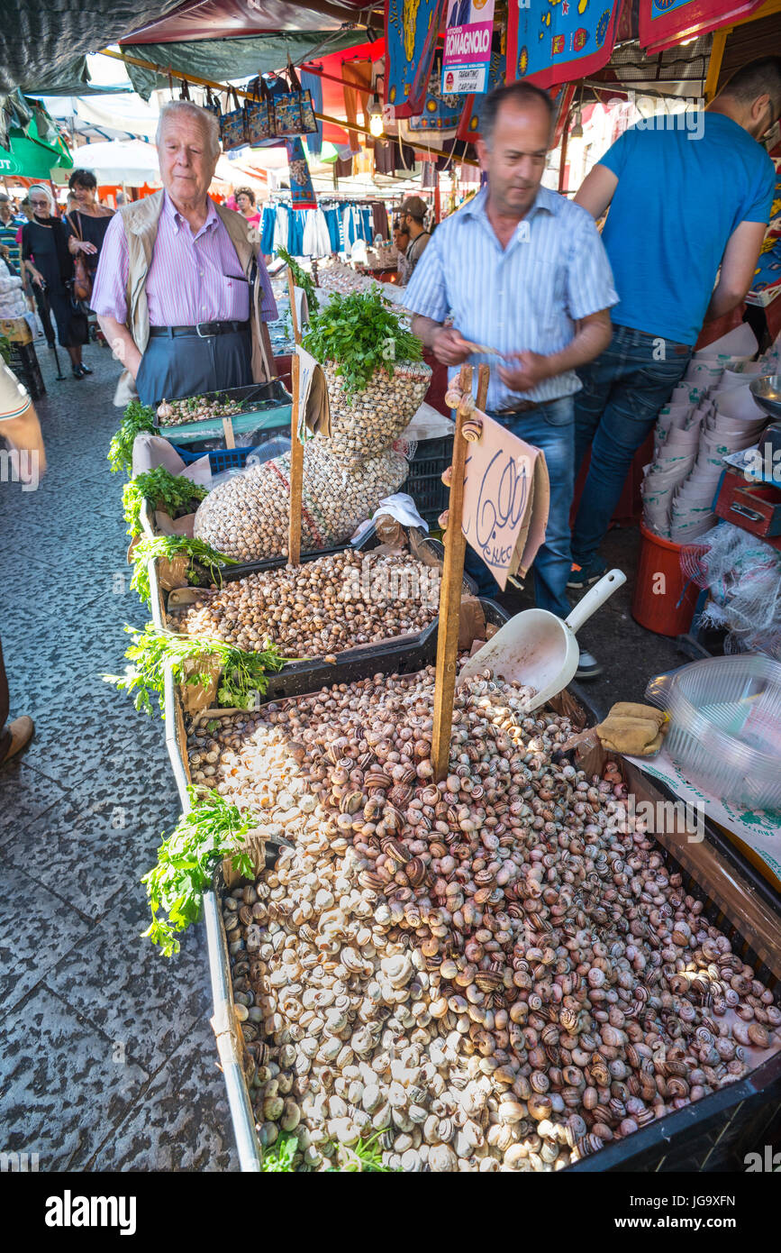 Live snails for sale in The Ballaro Market in the Albergheria district of central Palermo, Sicily, Italy. - Stock Image