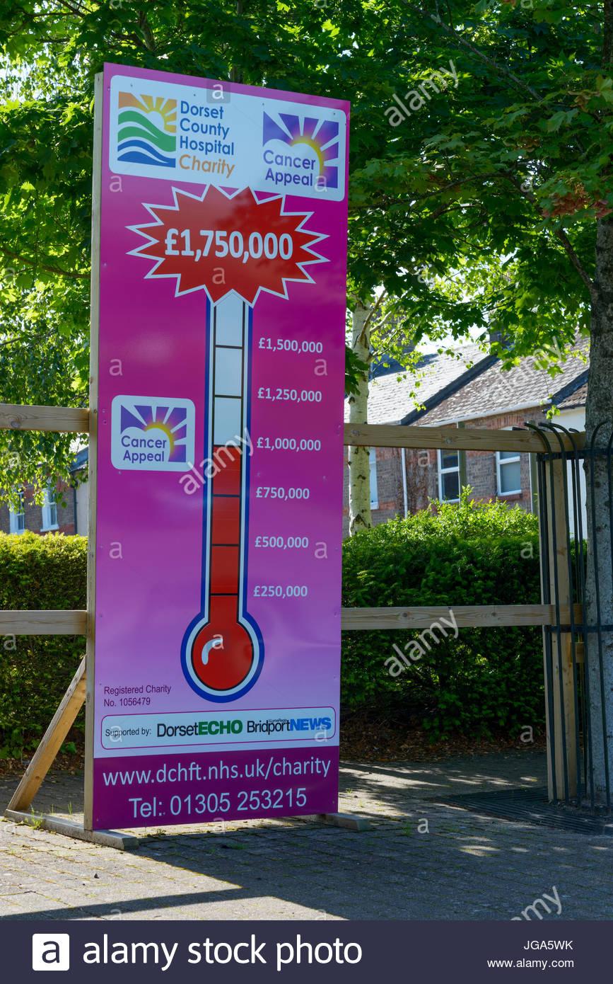 Fundraising, Dorchester Hospital, Dorset ,England, UK Stock Photo
