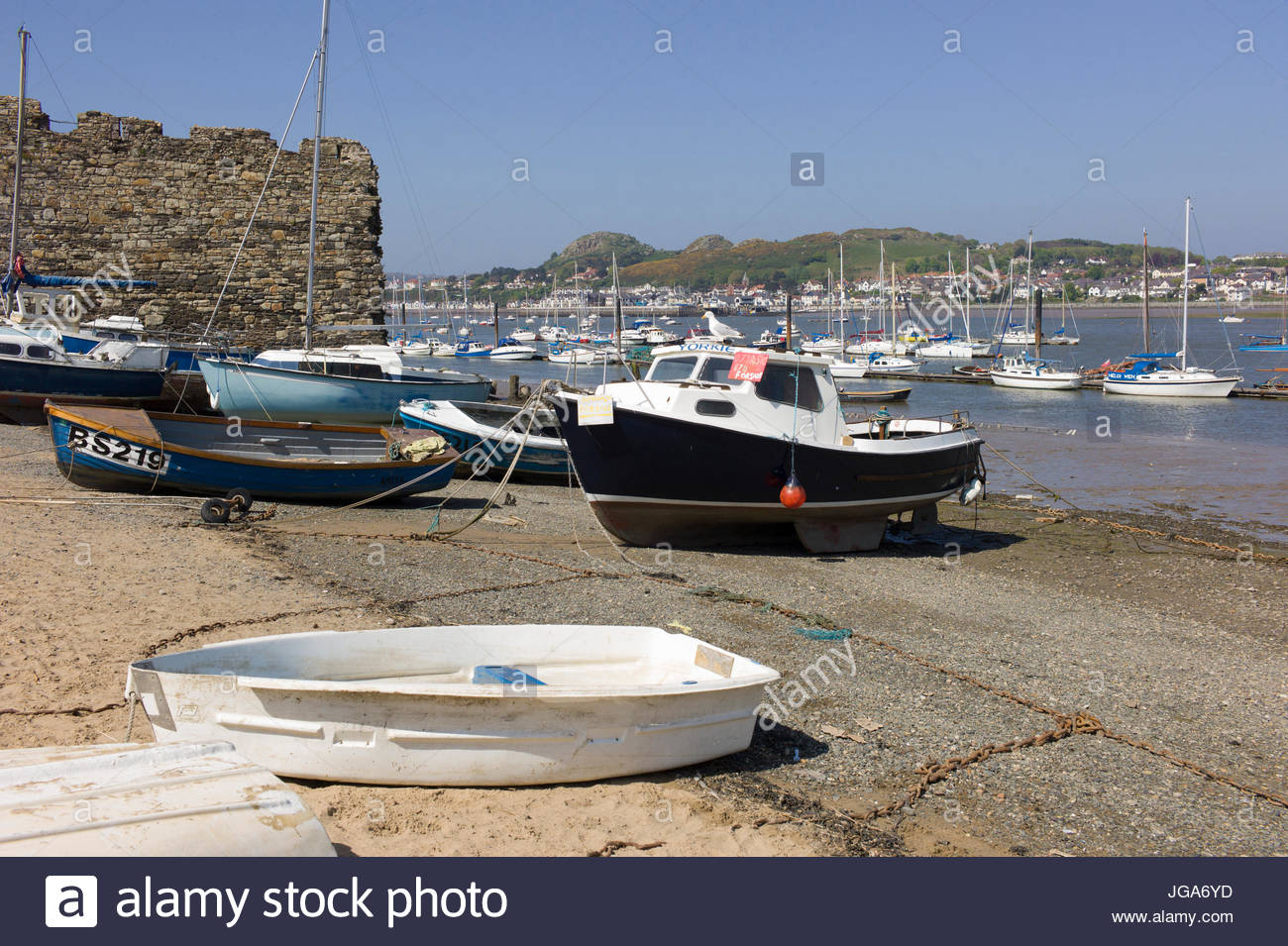 Motor boats and yachts moored in Conwy Harbour, north Wales, UK. One motor boat for sale. Stock Photo