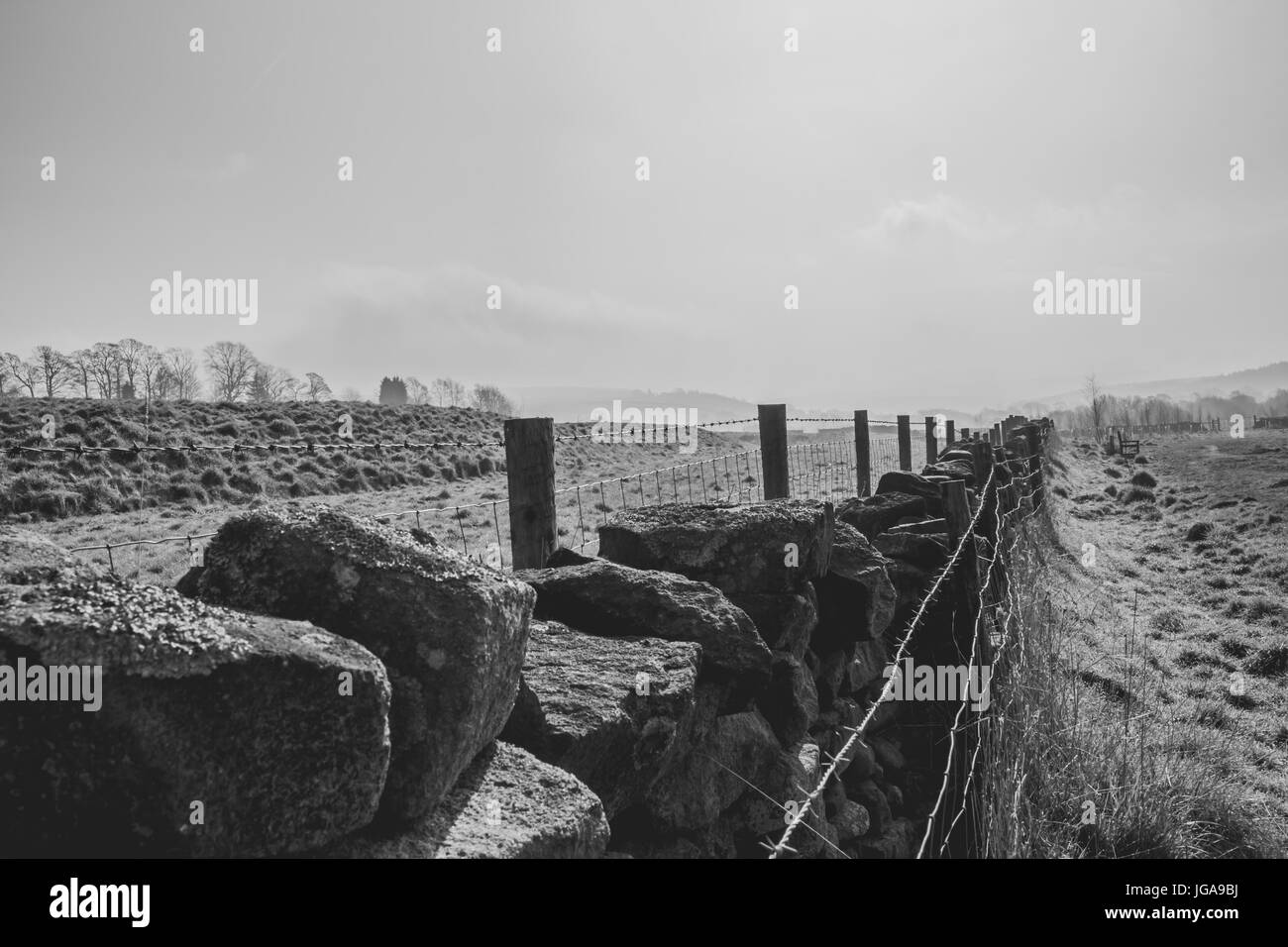 Black and white photo of the countryside featuring a dry stone wall - Stock Image