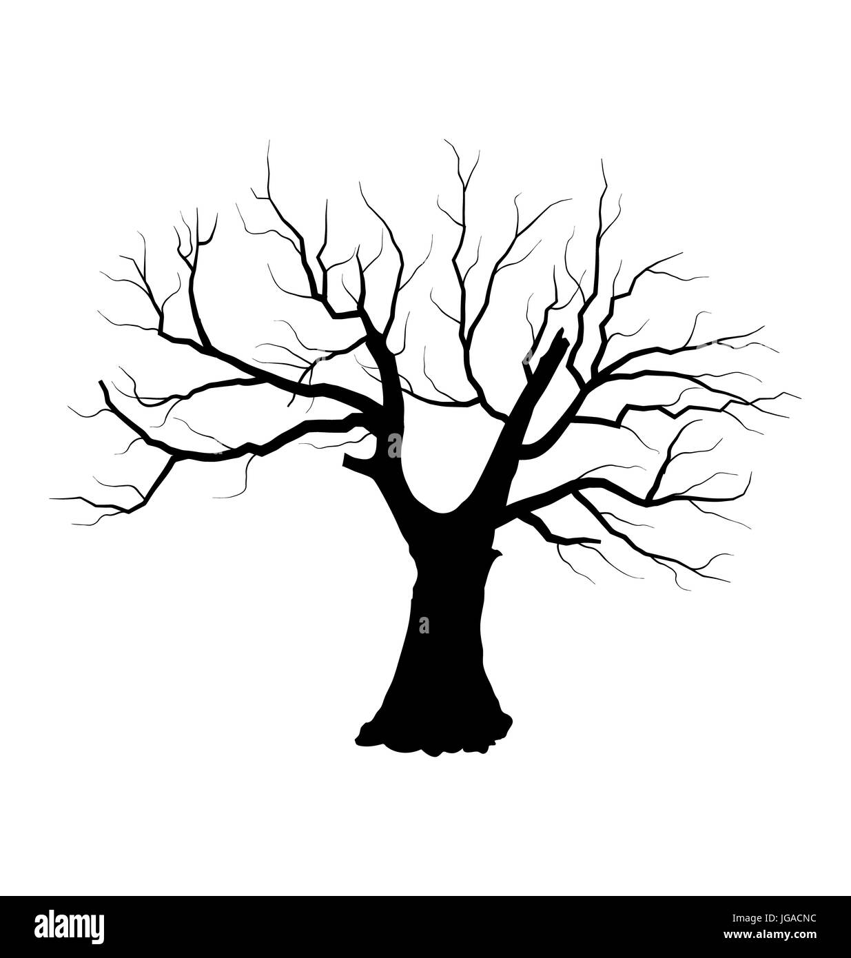 Illustration Sketch Of Dead Tree Without Leaves Isolated On White Stock Photo Alamy 1000 x 1333 jpeg 142 кб. alamy