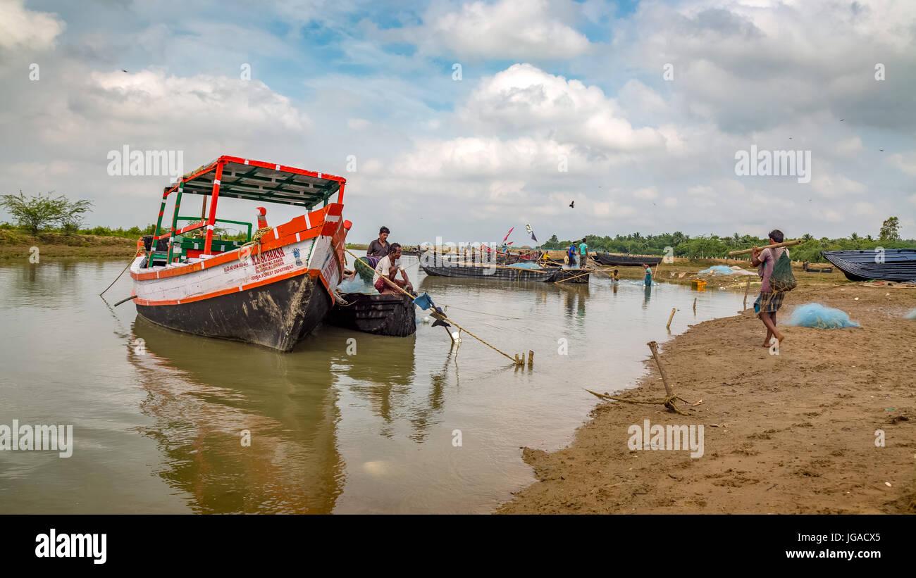 Fishermen prepare the fishing trawlers before going to sea at the river estuary in Bichitrapur, Odisha, India. - Stock Image