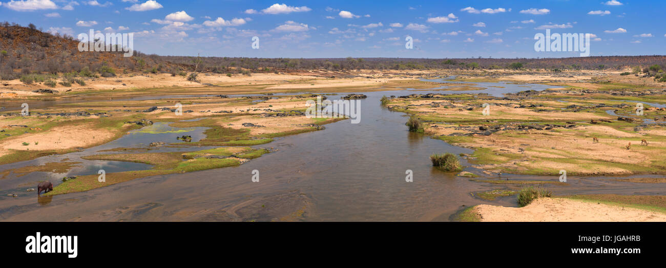 View over the Olifants River in Kruger National Park on a bright and sunny day. - Stock Image