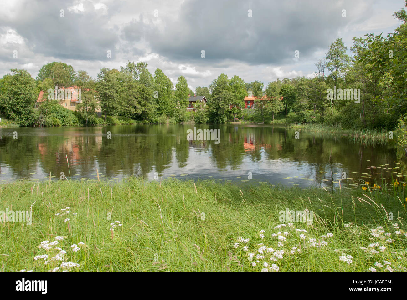 By the river in summer - Stock Image