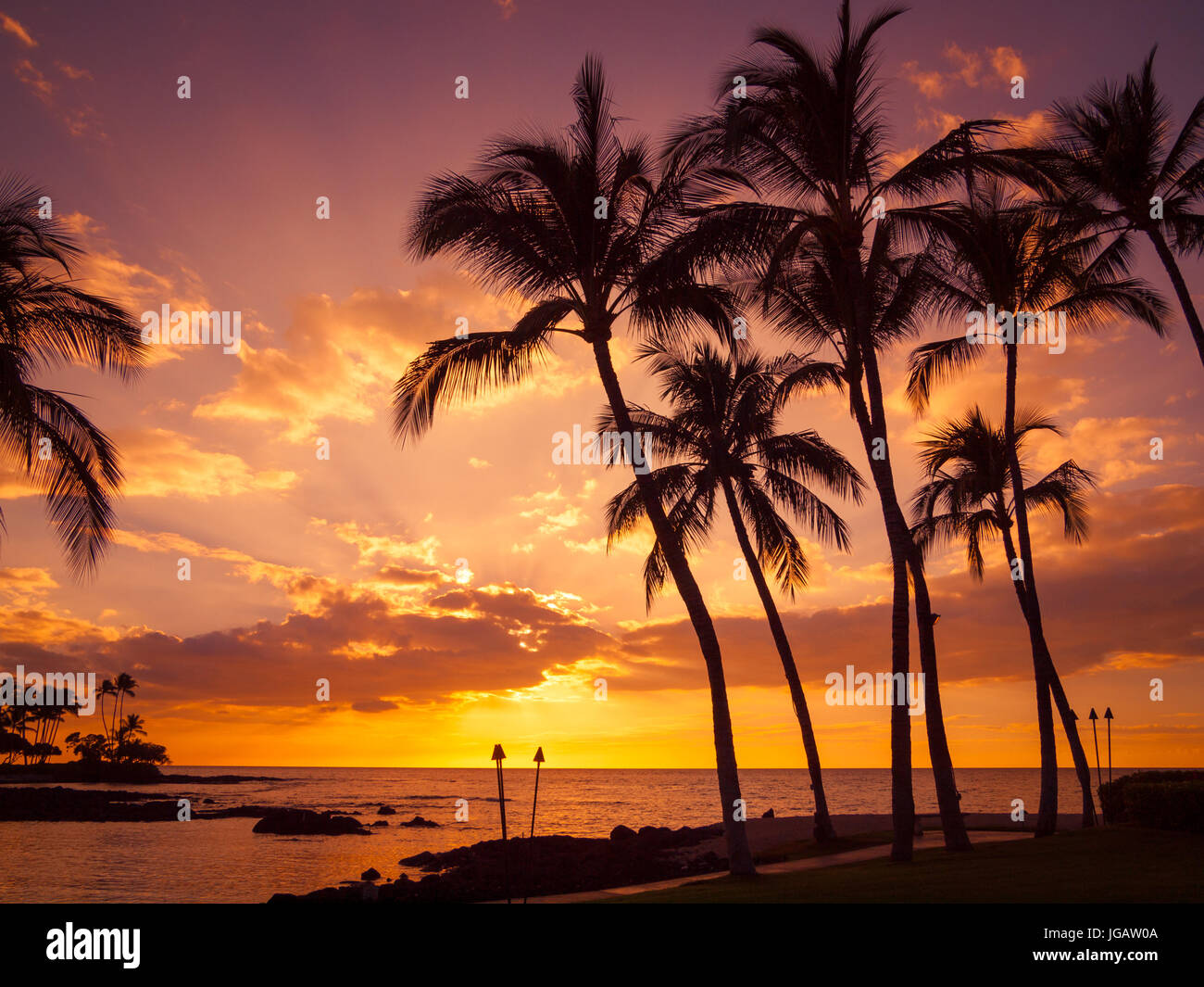A beautiful sunset and silhouetted coconut palm trees as seen from Pauoa Bay at the Fairmont Orchid, Kohala Coast, - Stock Image