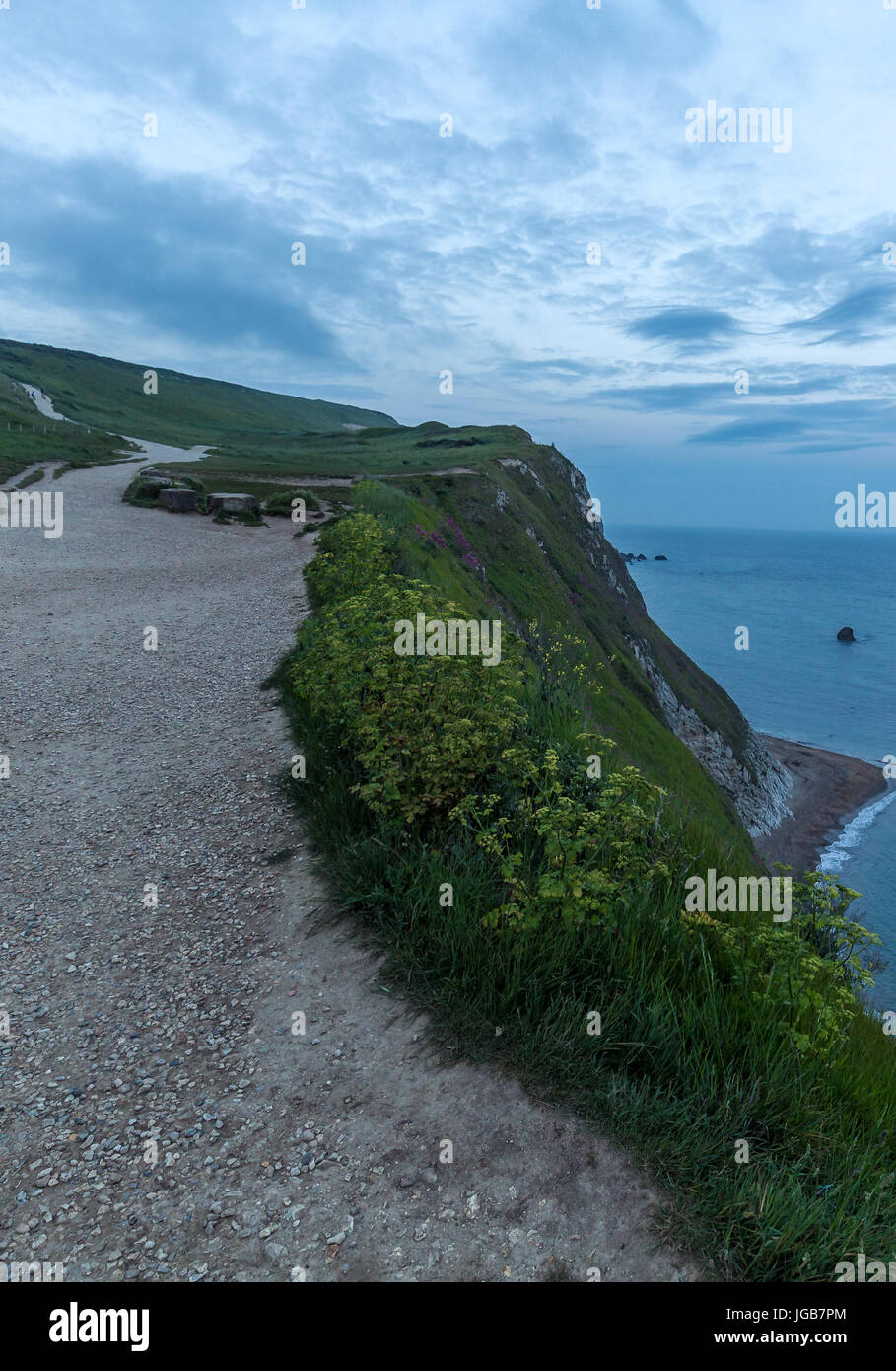 Pathway on top of jurassic coast in dorset England - Stock Image
