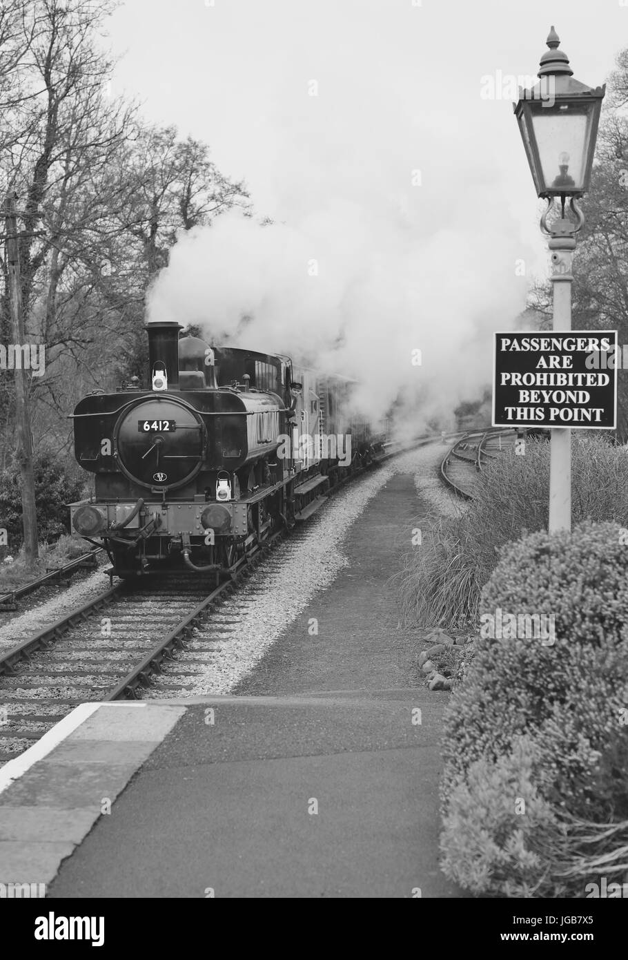GWR 0-6-0 pannier tank No 6412 hauling a goods train through Staverton station on the South Devon Railway. - Stock Image