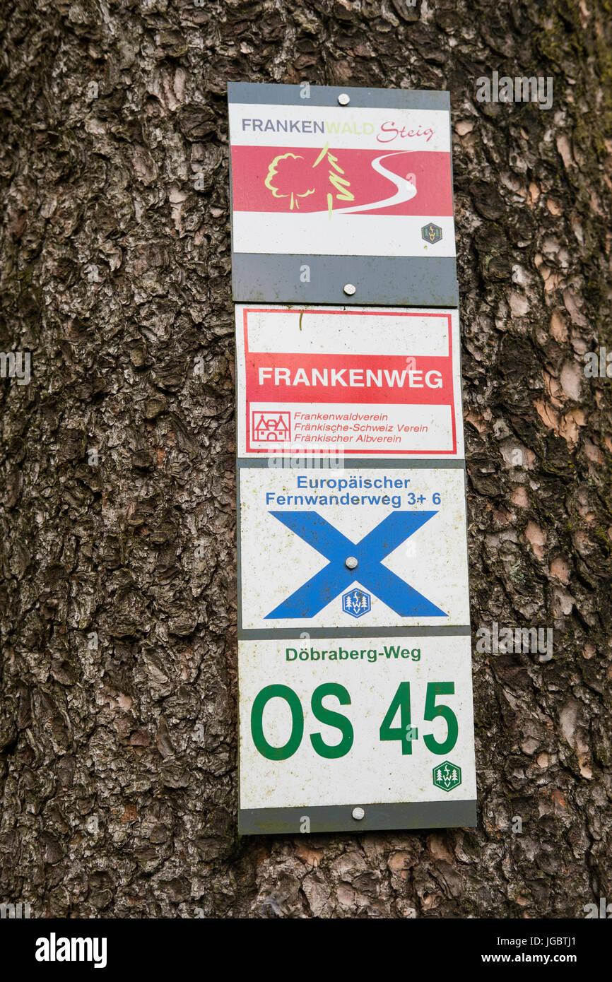 Hiking trail markings on tree trunk, Döbraberg near Schwarzenbach am Wald, Franconian forest, Upper Franconia, - Stock Image