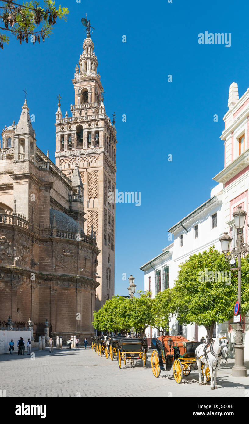 Bell Tower of the Catedral de Santa María de la Sede, Seville, Andalucia, Spain. The cathedral tower from an adjoining Stock Photo