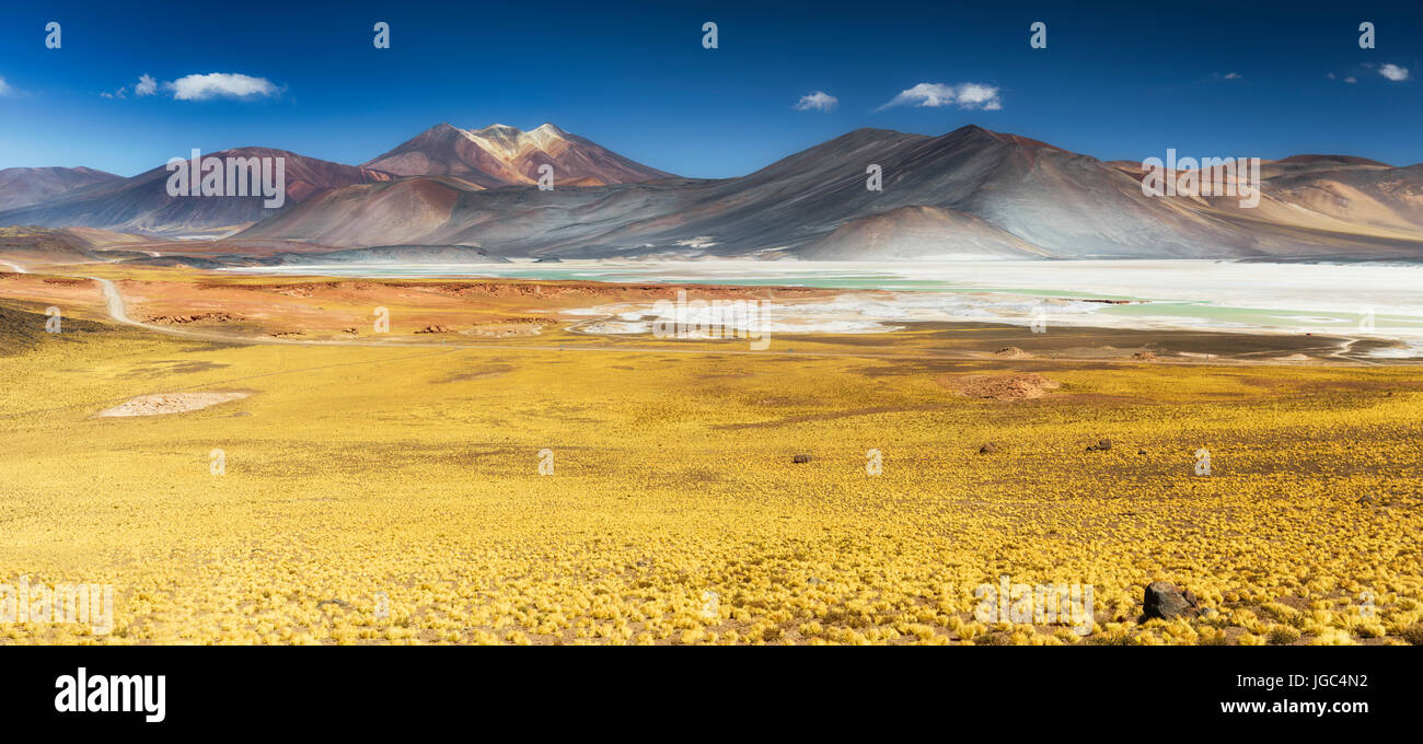 Salar de Aguas Calientes, Atacama, Chile Stock Photo