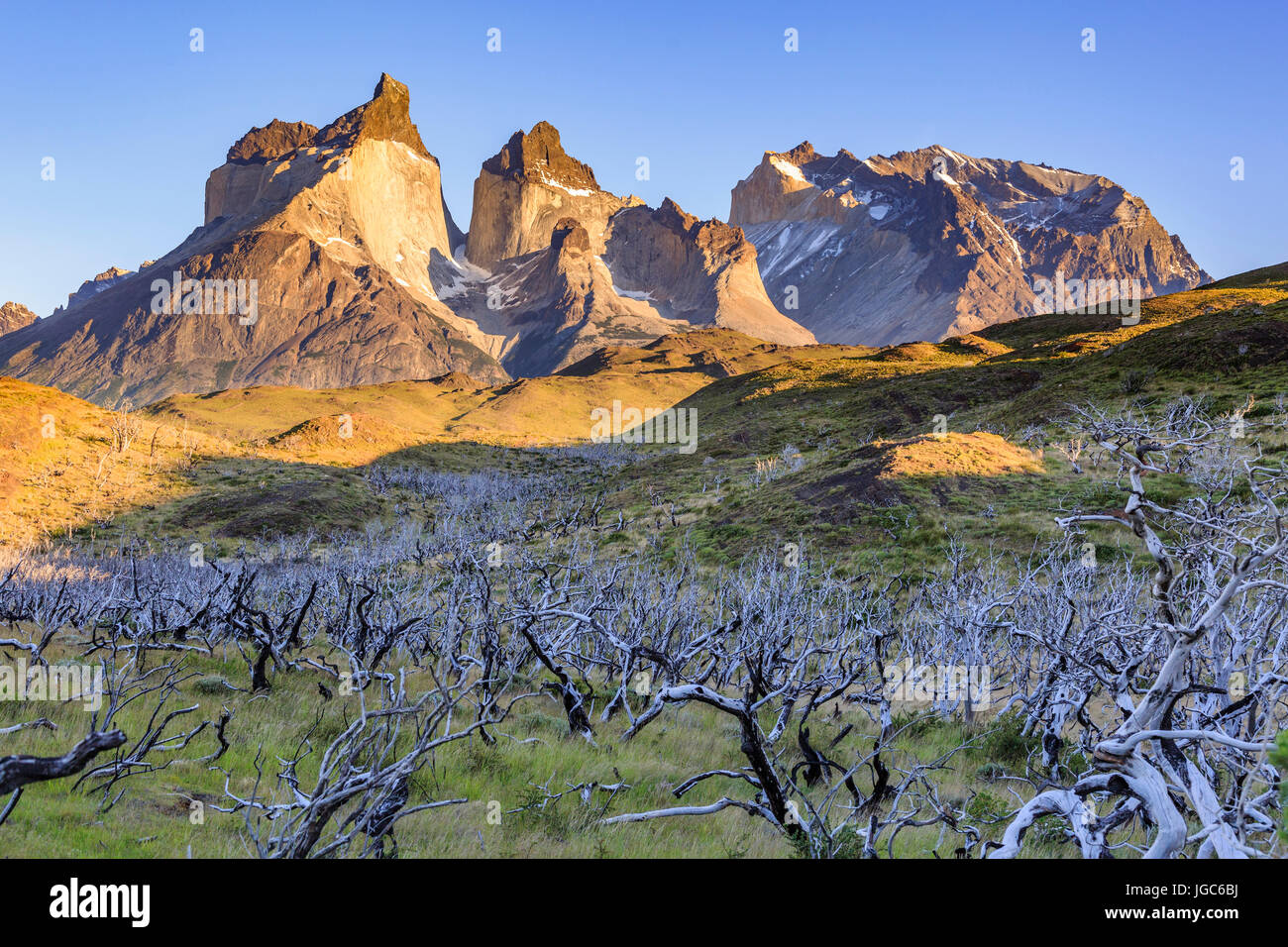 Cuernos del Paine at sunrise, Torres del Paine National Park, Patagonia, Chile - Stock Image