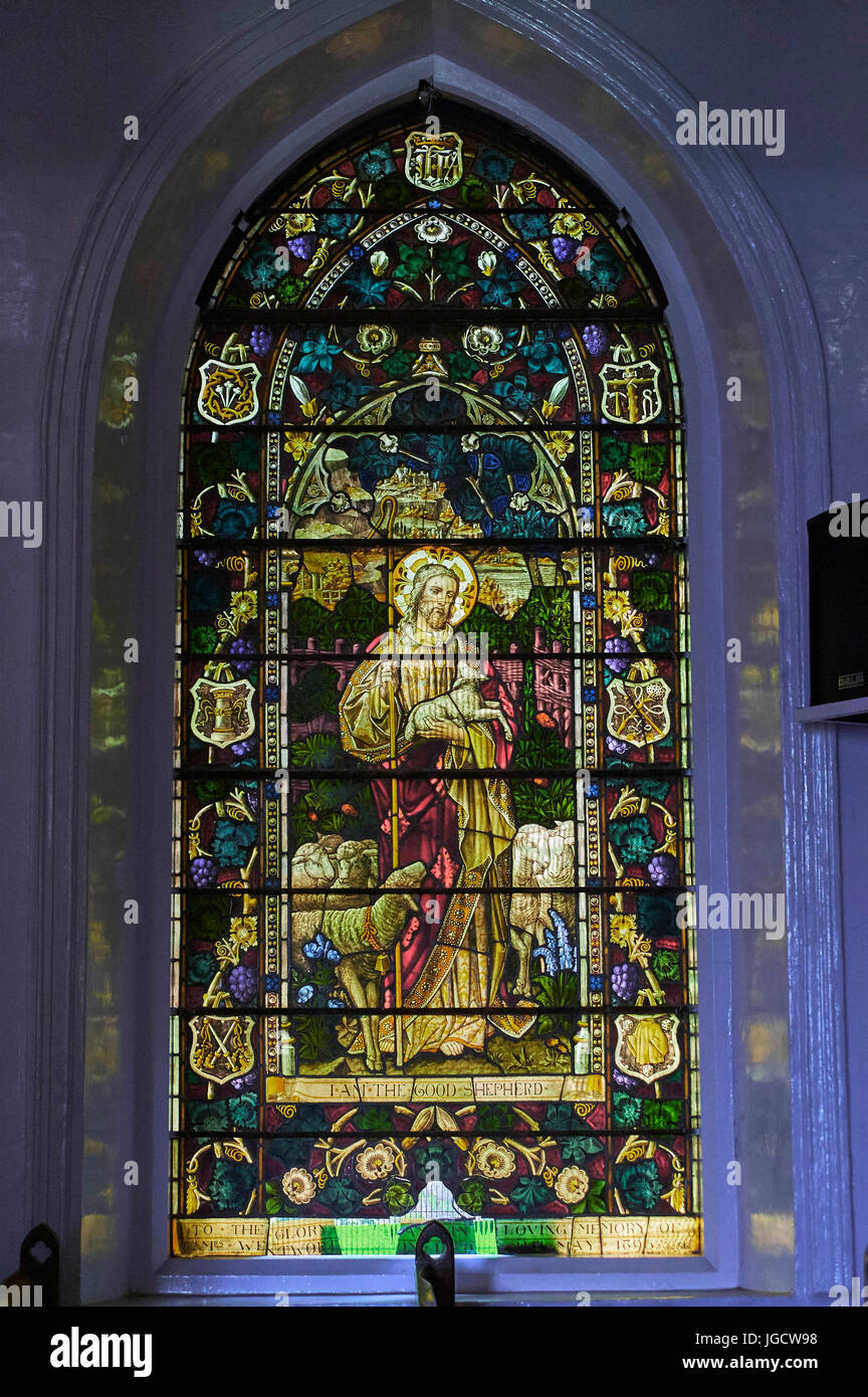 Stained glass window of saint Stephen church ooty, Tamil nadu, india, asia - Stock Image