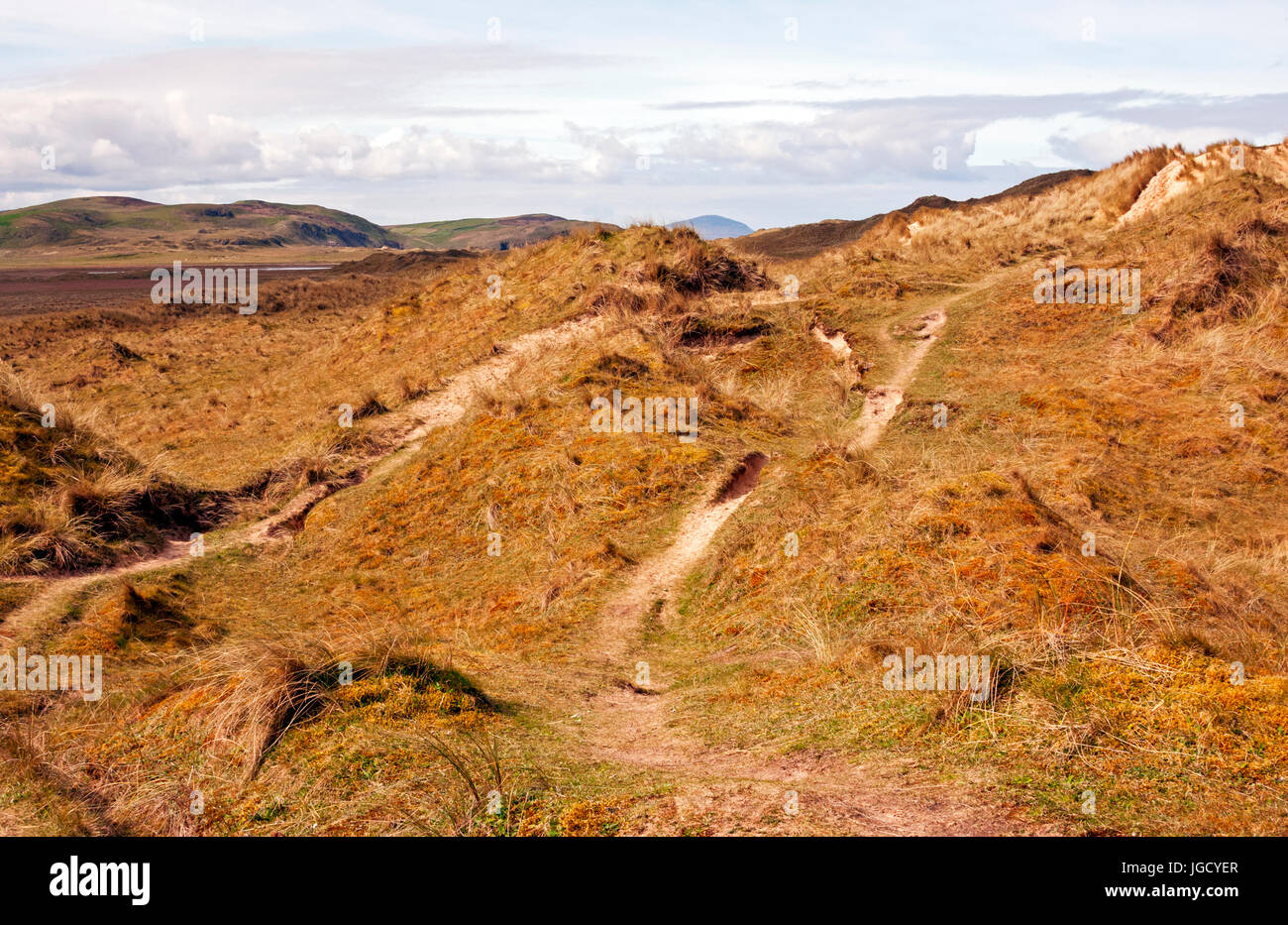 Sand dunes on the way to Tramore Beach, Dunfanaghy, County Donegal, Ireland - Stock Image