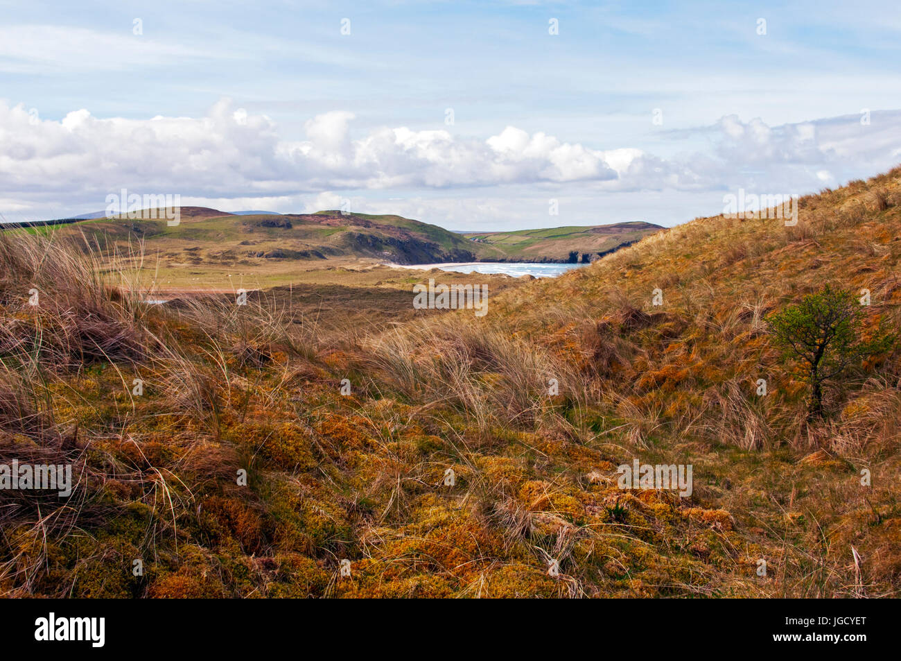 View of Tramore Beach from the trail, Dunfanaghy, County Donegal, Ireland - Stock Image