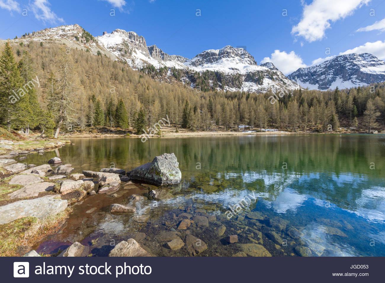 Europe, Italy, Trentino Alto Adige, Moena, Dolomites, the  alpine lake of San Pellegrino surrounded by a forest Stock Photo
