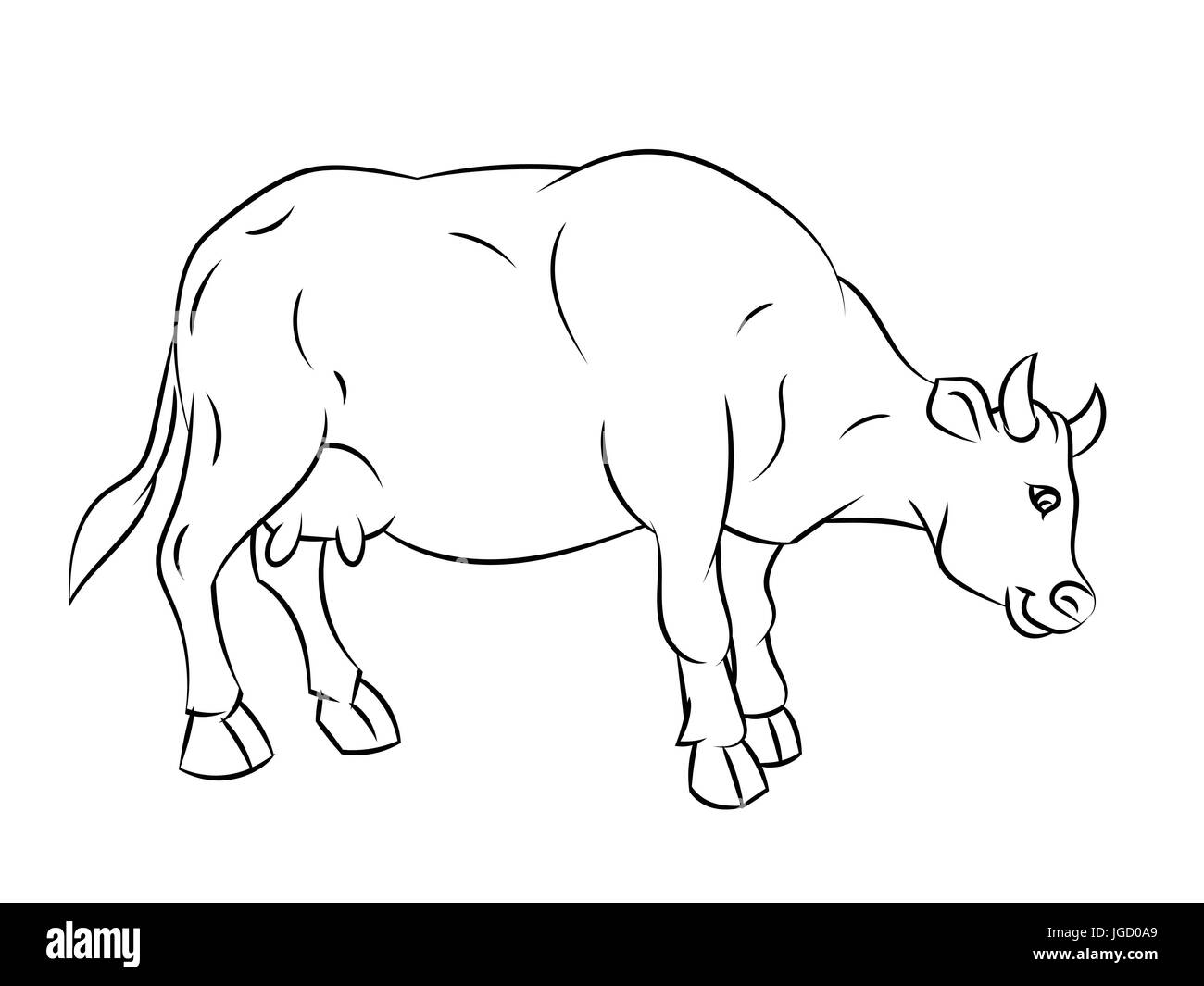 Hand drawn sketch of Cow isolated, Black and White Cartoon Vector Illustration for Coloring Book - Line Drawn Vector - Stock Image