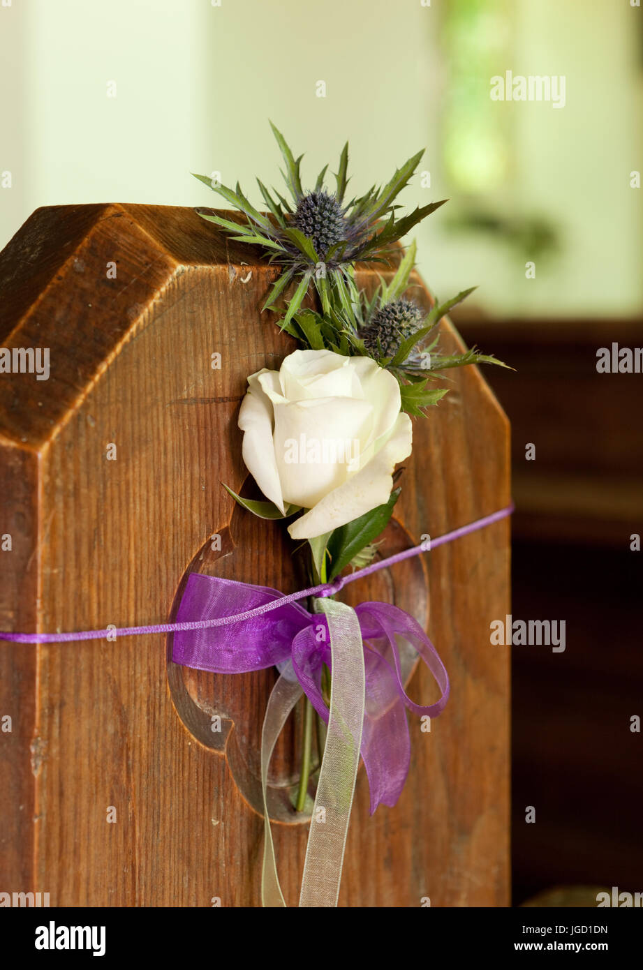 Cream rose with thistle tied to church pew for wedding floral decoration. unsharpened - Stock Image