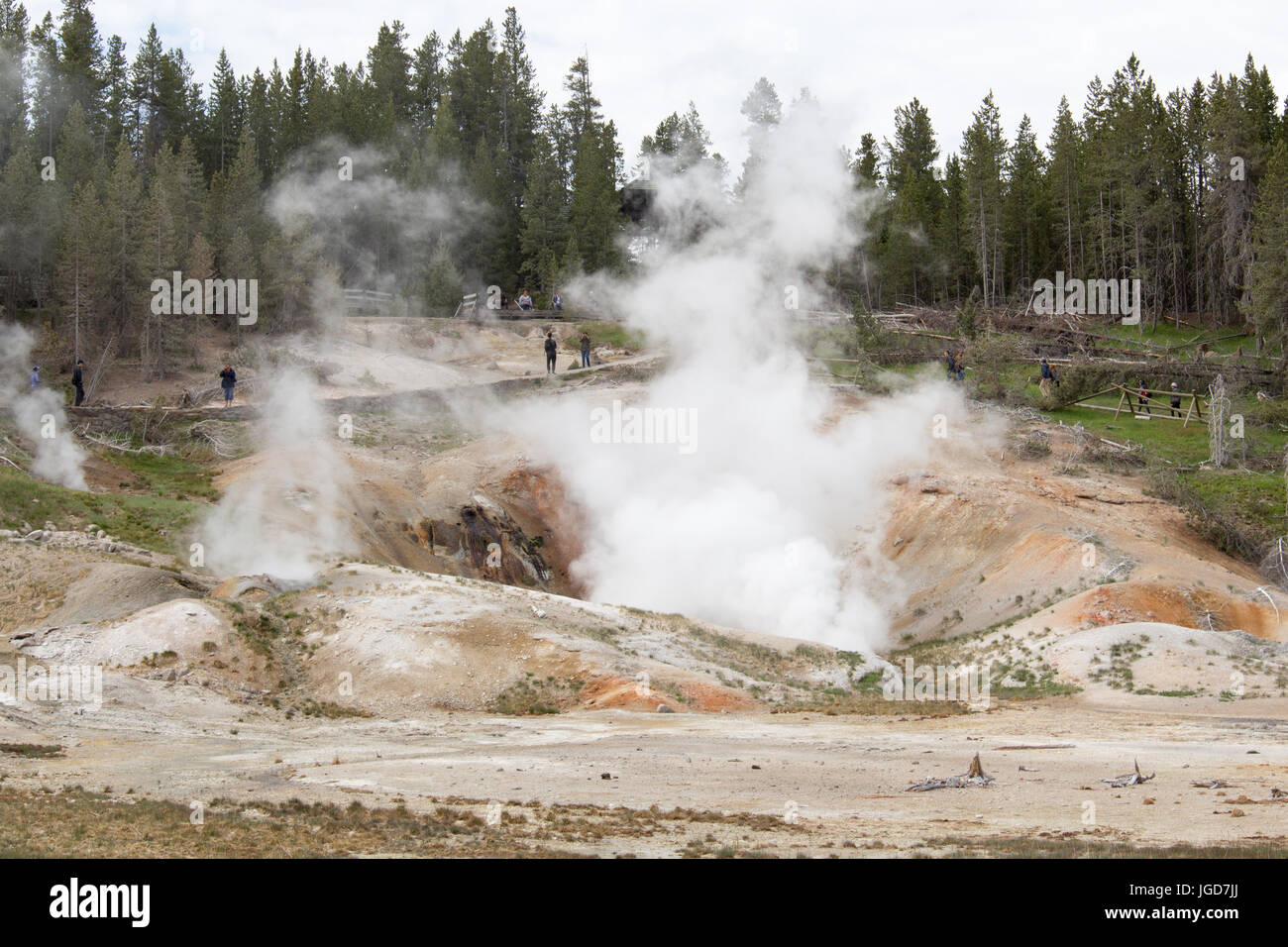 Black Growler Steam Vent at Porcelain Basin, Norrise Geyser Basin, Yellowstone National Park - Stock Image