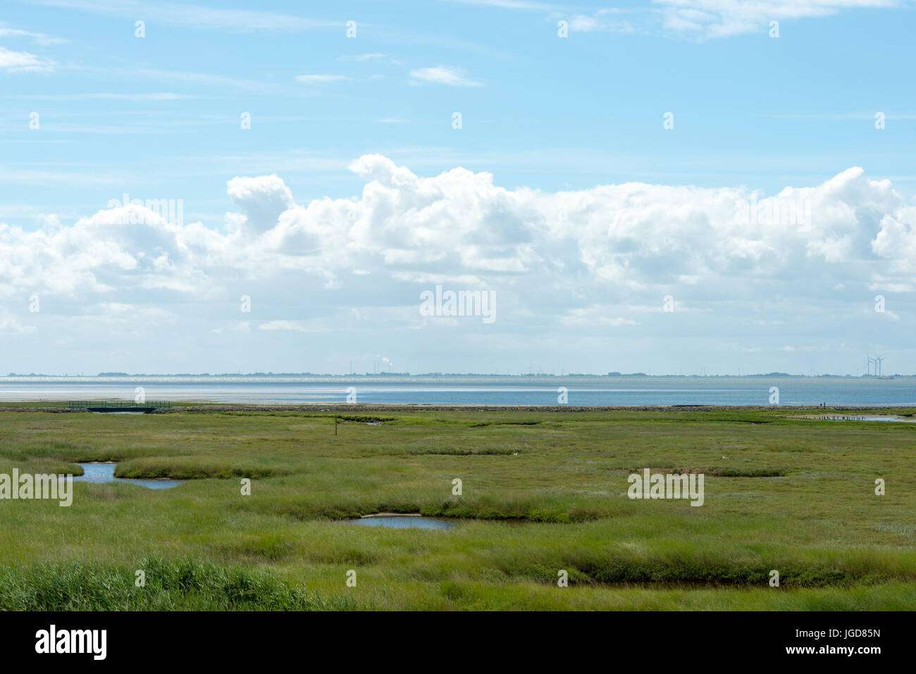 WANGEROOGE, GERMANY.  04th July 2017:  view of the dunes of the national park wadden sea on the island wangeroog, Stock Photo
