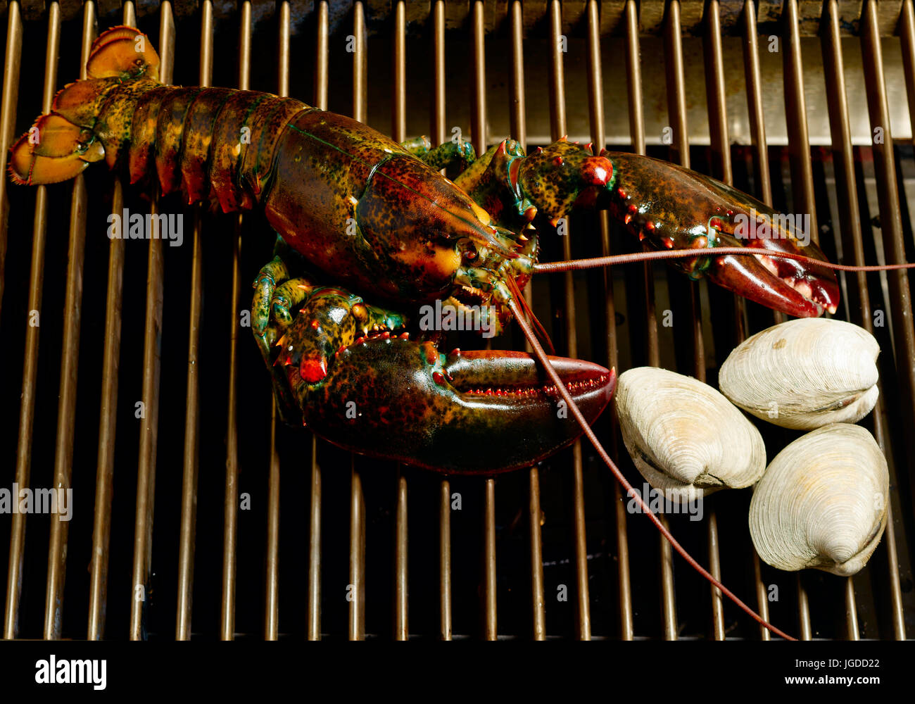 Lobster and clam bake Stock Photo