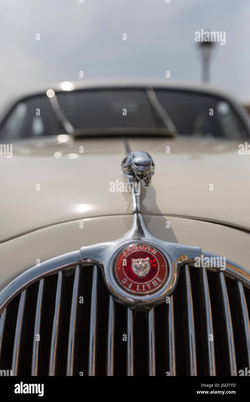 Symbol Of Jaguar Stock Photos Symbol Of Jaguar Stock Images Page