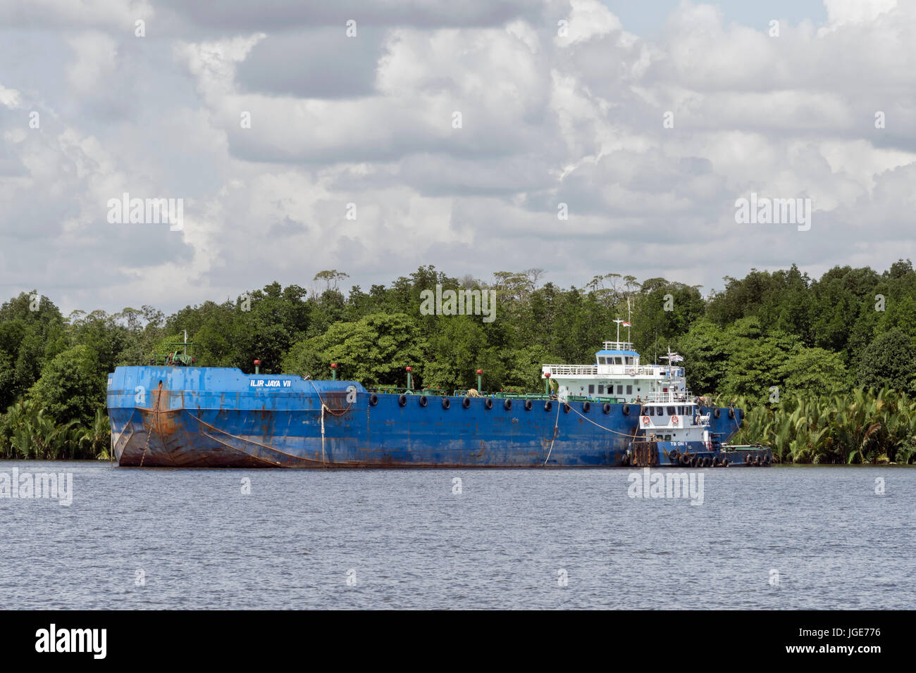 Freighter anchored by the banks of the Kumai River, Kalimantan Province, Borneo - Stock Image