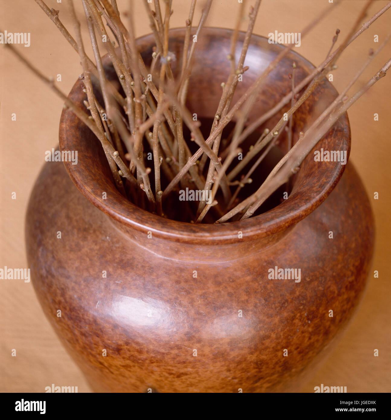 Closeup of polished wood vase holding twigs - Stock Image