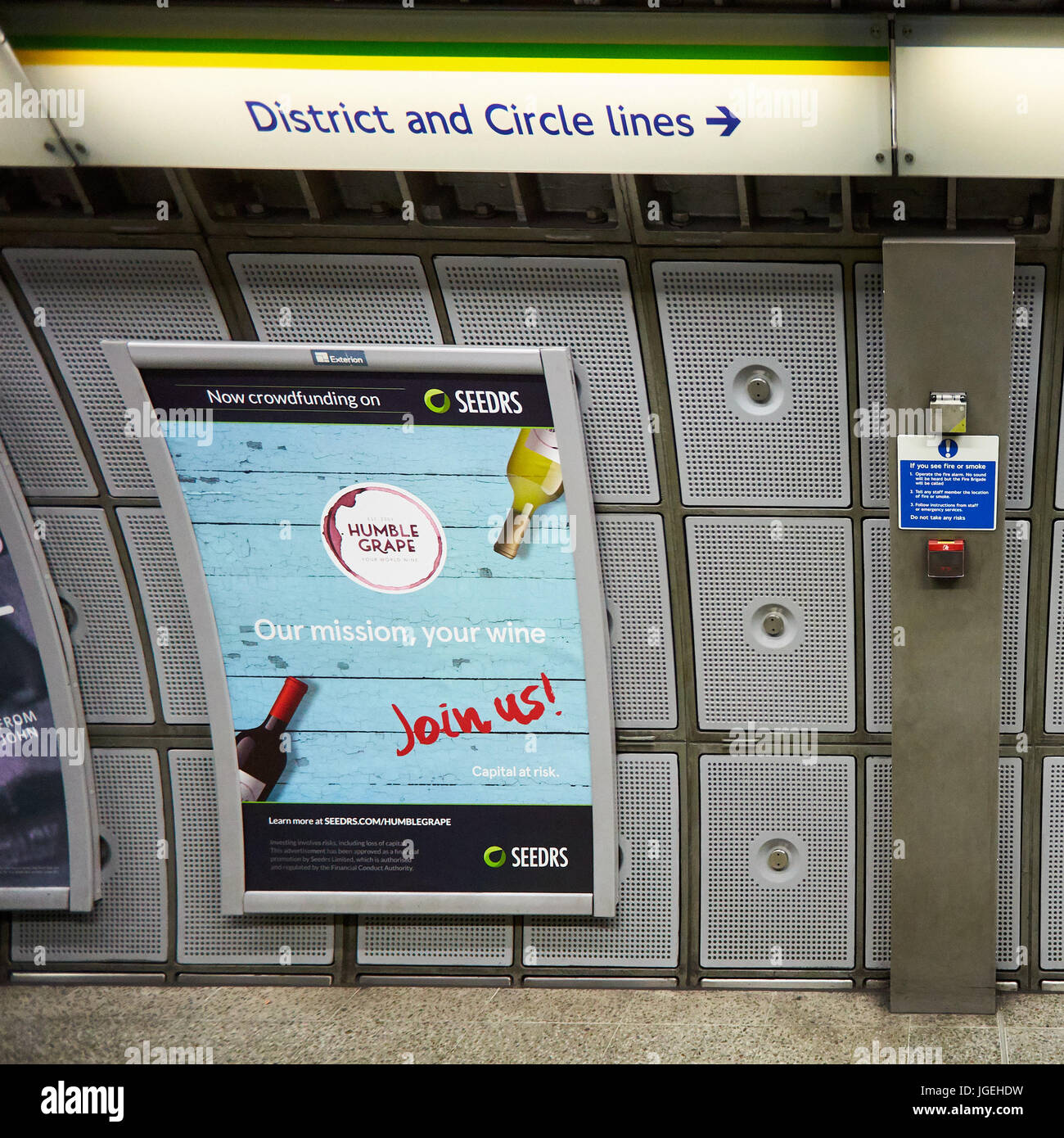 A crowdfunding poster for Humble Grape on Seedrs on the platform at Westminster underground station - Stock Image