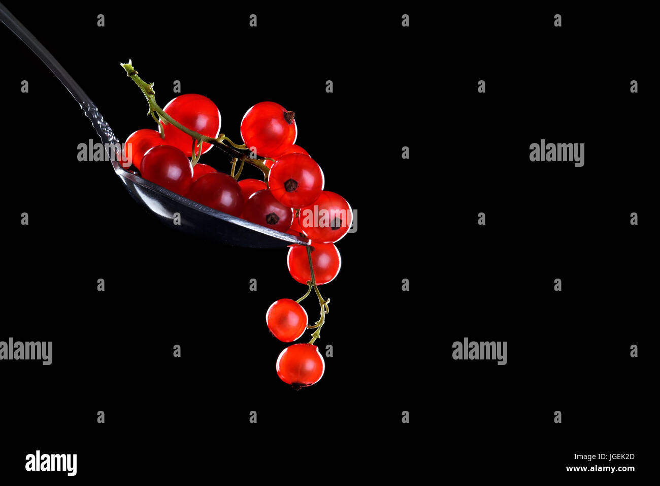 Ripe red currant berries on a black background. - Stock Image
