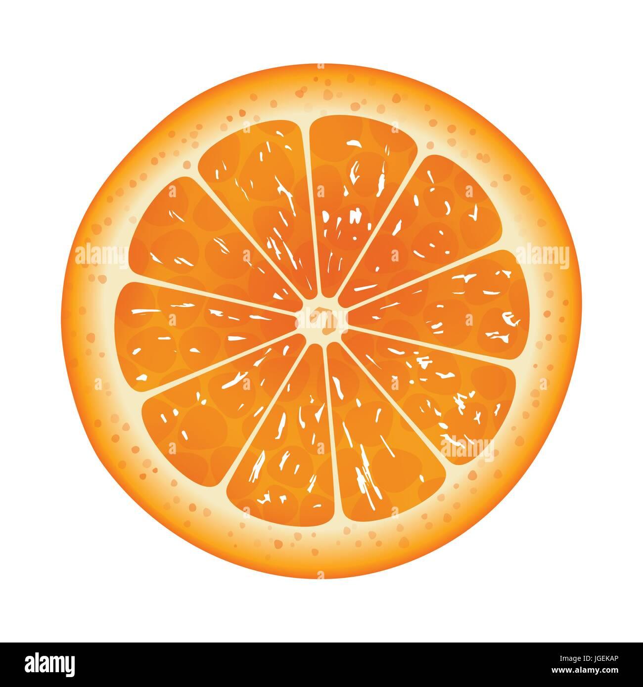 Orange slice isolated on white background Stock Vector Art