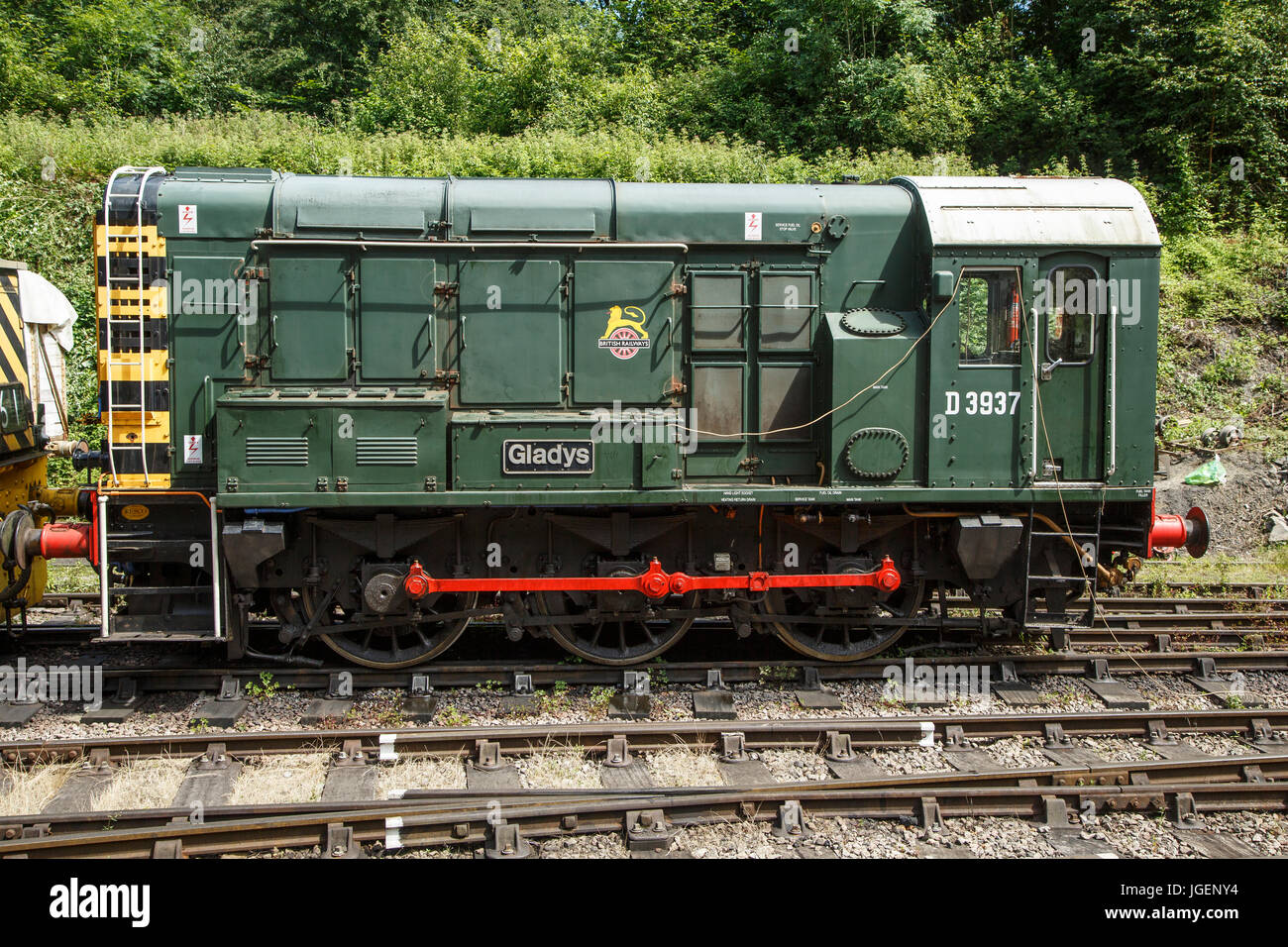 BR 0-6-0 Class 08, No. 08769 (D3937) 'Gladys', at the Dean Forest Railway, Forest of Dean, Gloucestershire - Stock Image