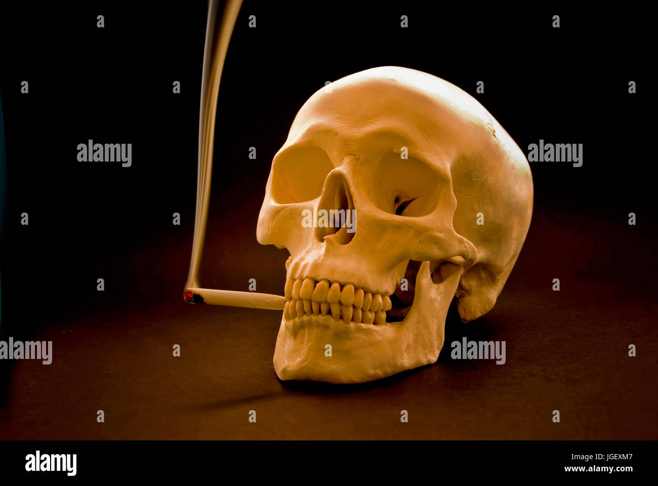 smoking skull - Stock Image