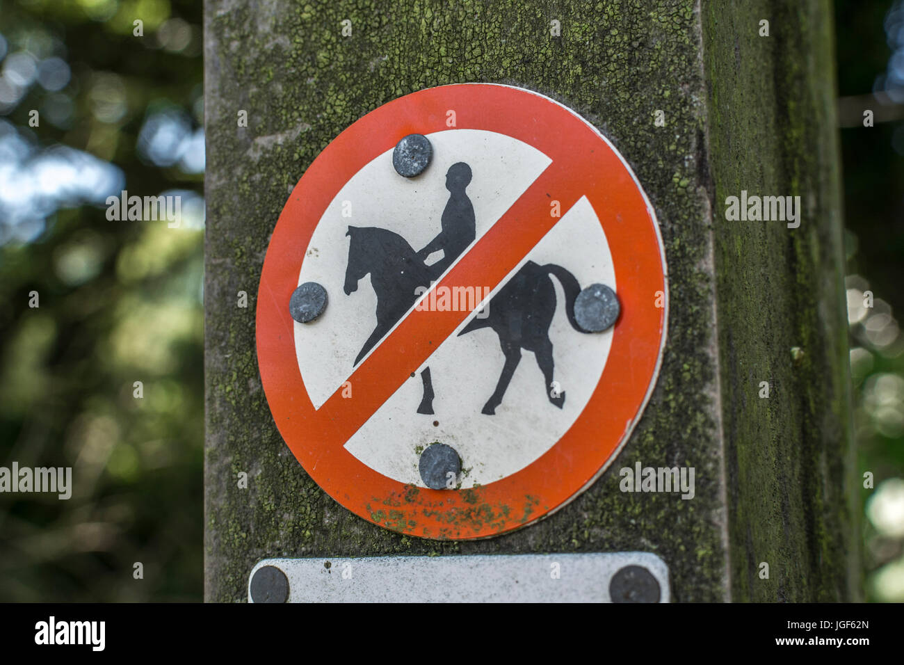 No horse-riding sign on a rural country trail in Cornwall. - Stock Image