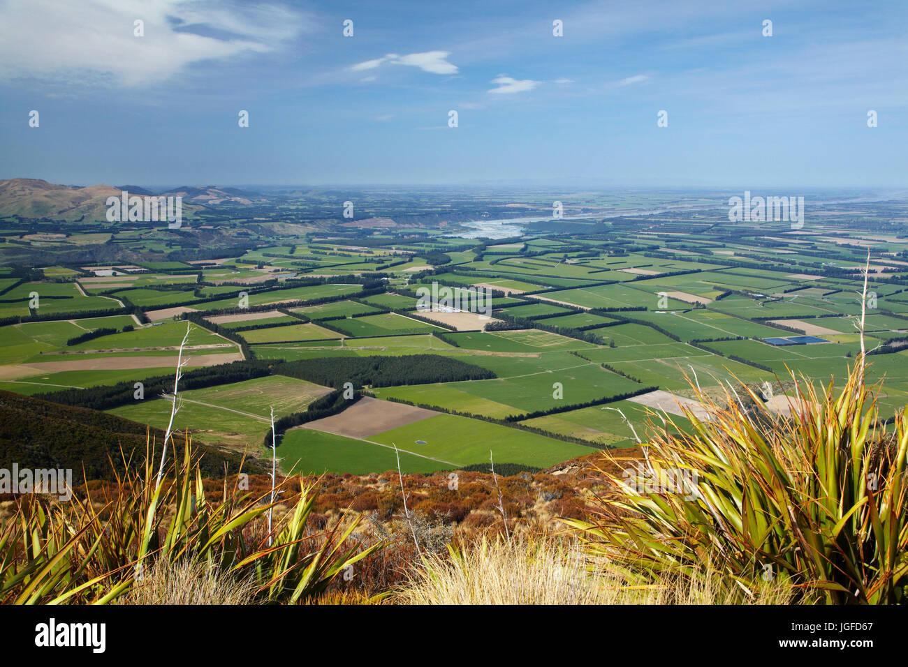 Canterbury Plains and Rakaia River seen from Mount Hutt, Mid Canterbury, South Island, New Zealand - Stock Image