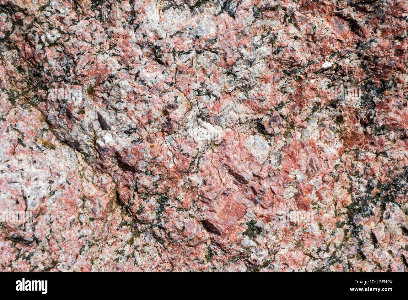 Pegmatite, holocrystalline, intrusive igneous rock, showing grain structure and texture - Stock Image