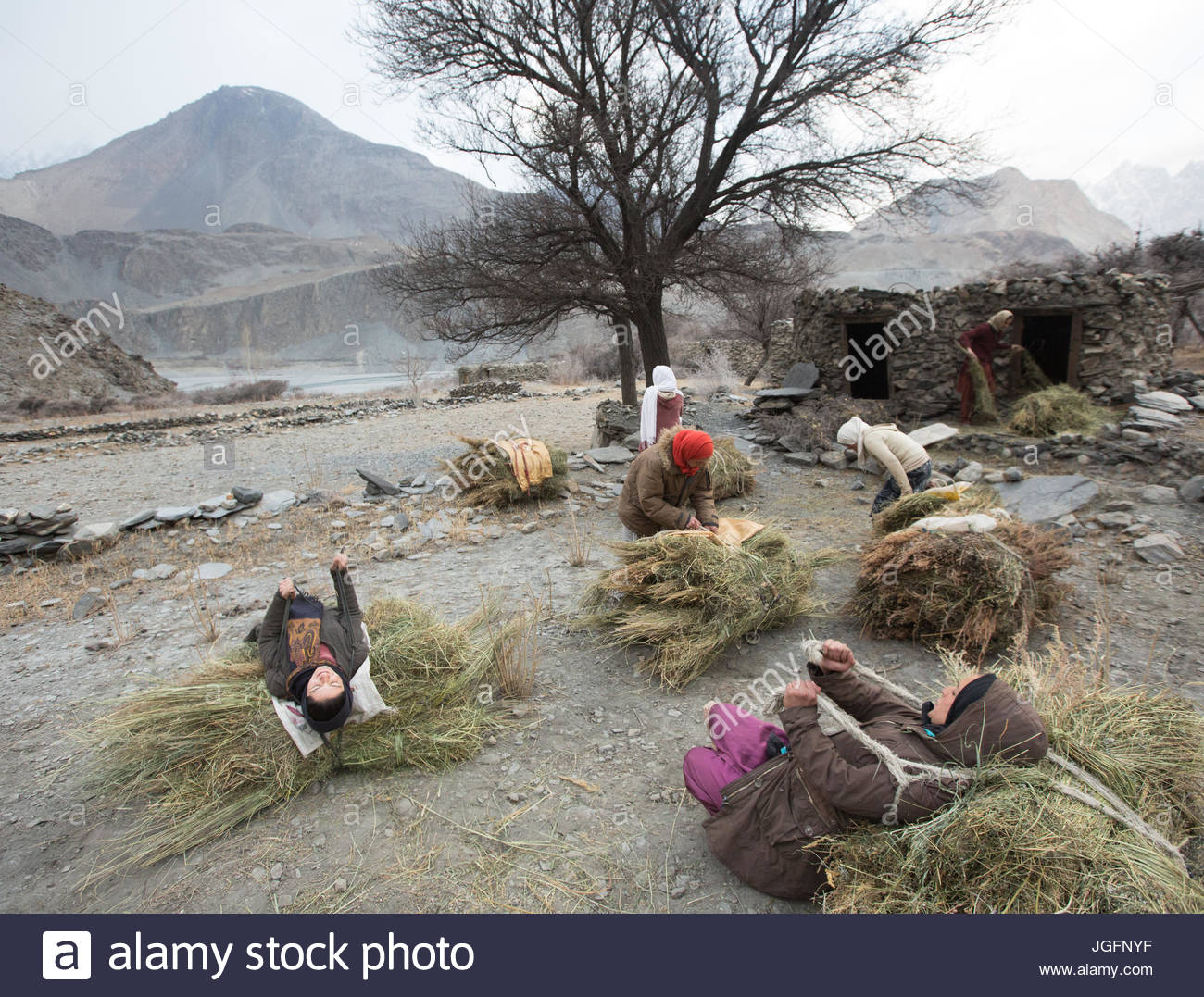 Women on their daily trek to get wood for cooking and heating and hay to feed their livestock, a two hour walk. - Stock Image