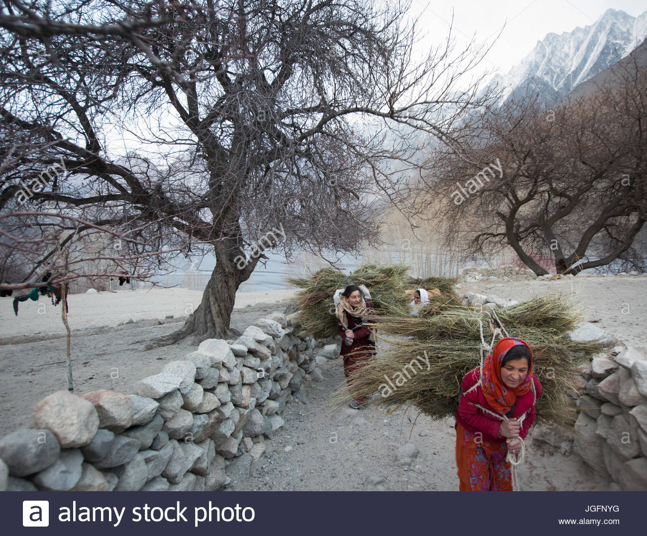 Women returning home after getting wood for cooking and heating and hay to feed their livestock, a two hour walk. Stock Photo