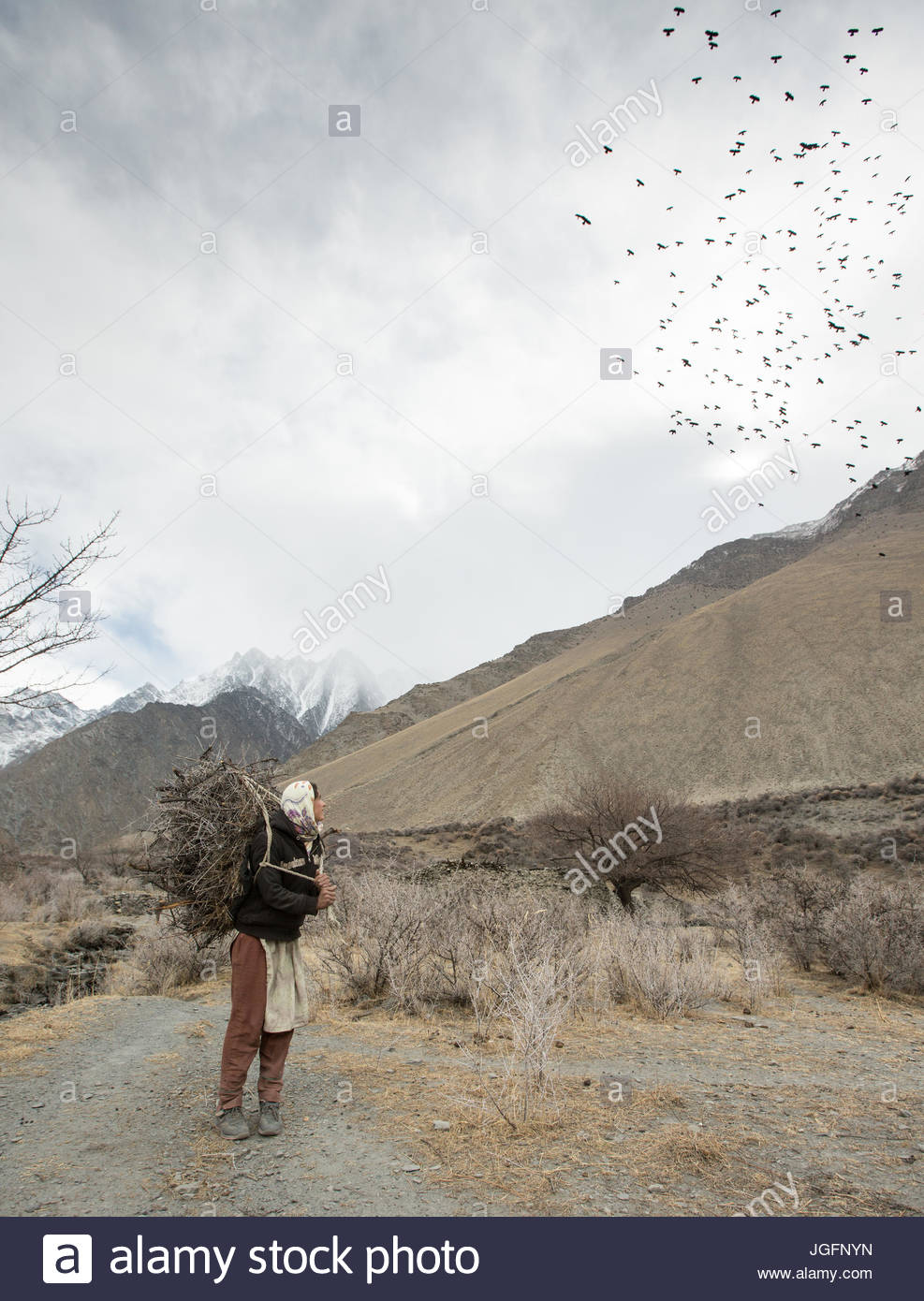A woman returning home after getting wood for cooking and heating and hay to feed their livestock, a two hour walk. - Stock Image