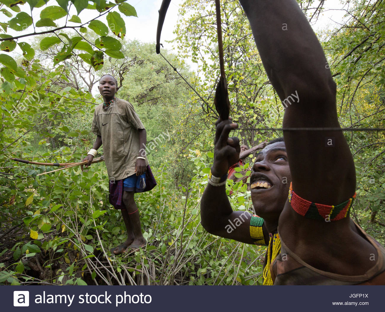 Hadza men hunting with bows and arrows. - Stock Image